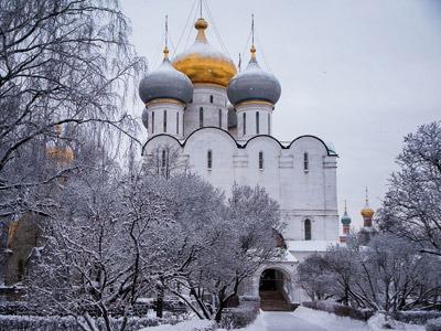 MOSCA NEVE