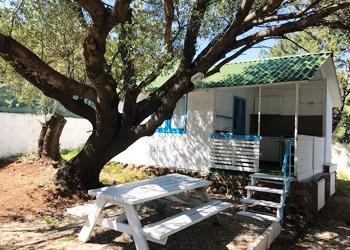 palmasera bungalow-2
