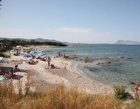 camping cala d'ambra spiaggia