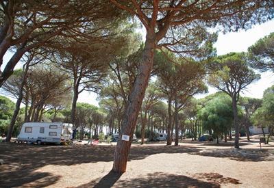camping s'ena arrubia